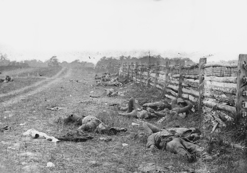 Antietam, Md. Confederate dead by a fence on the Hagerstown road. Photograph from the main eastern theater of the war, Battle of Antietam, September-October 1862.